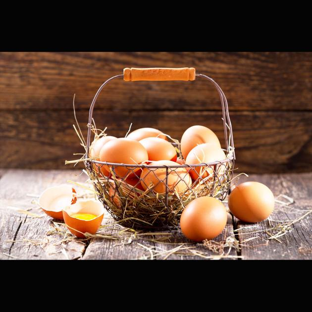 Eiklar - Protein, Eiweissprotein