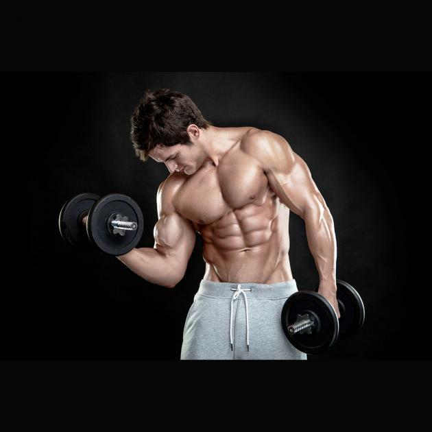 Vollei - Protein, Trockenei