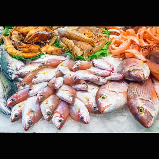 Gelatine, Fischgelatine