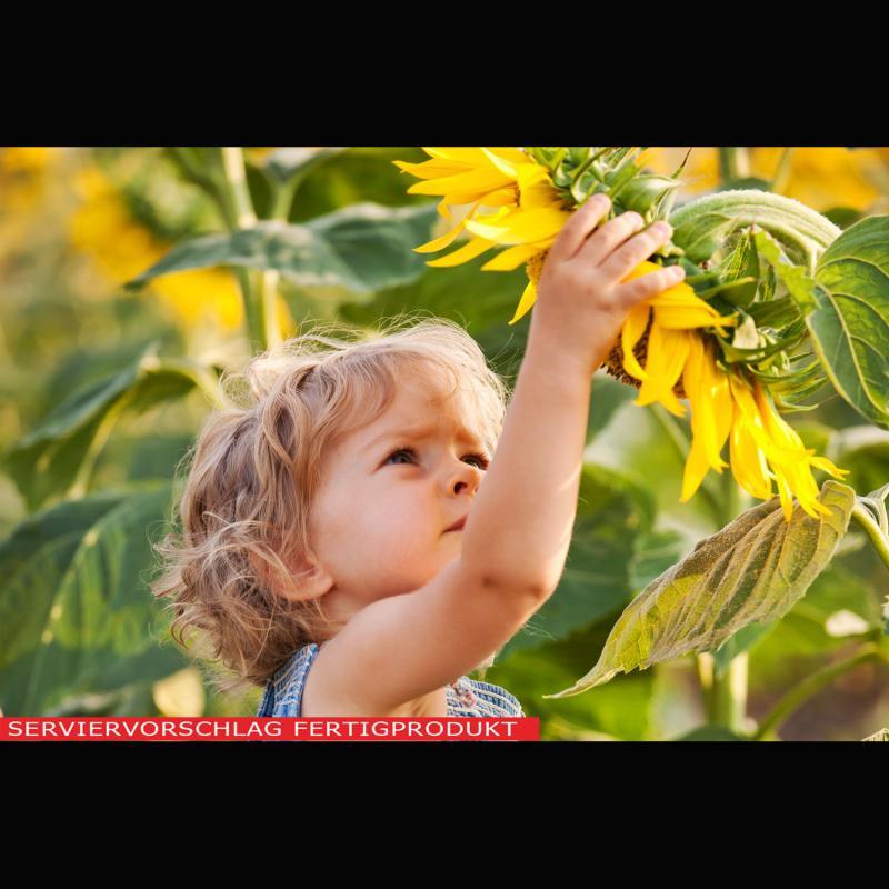 Lecithin, Sonnenblumenlecithin